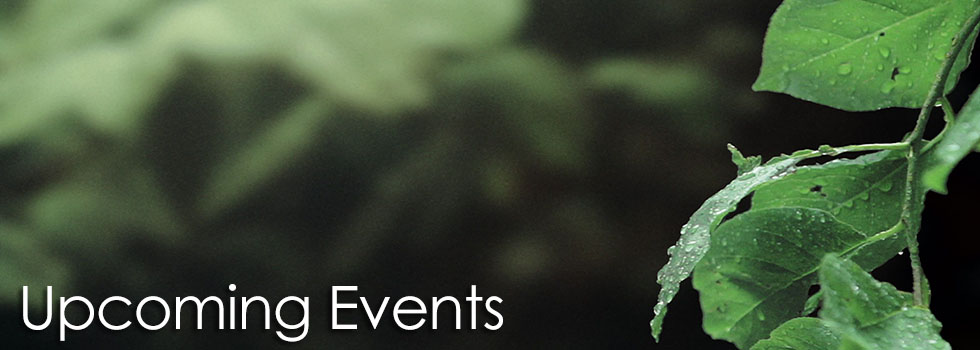 events15